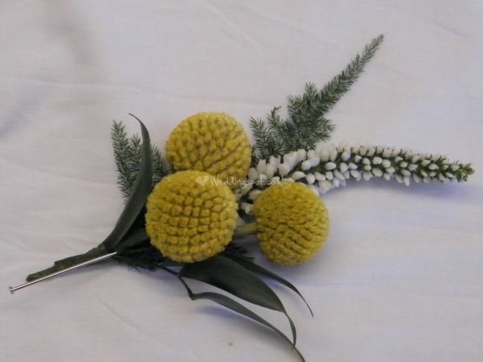 15%20Buttonhole%20of%20Craspedia%20%26%20White%20Veronica (700x525, 186Kb)