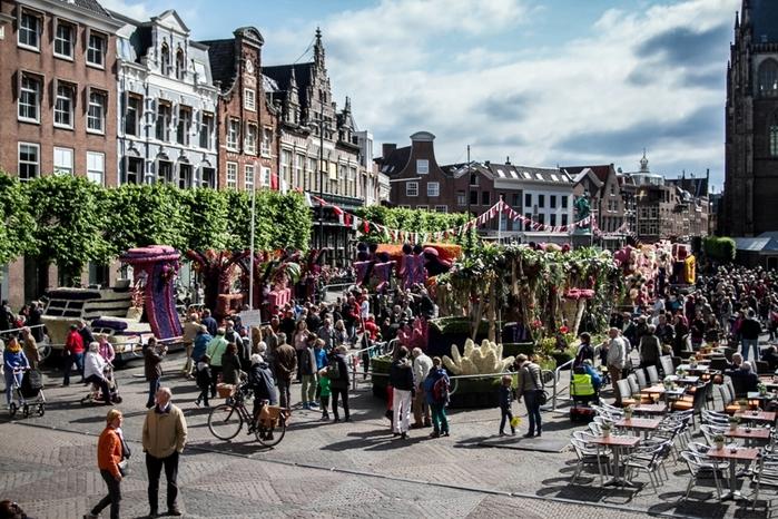 парад цветов нидерланды 1 (700x466, 321Kb)