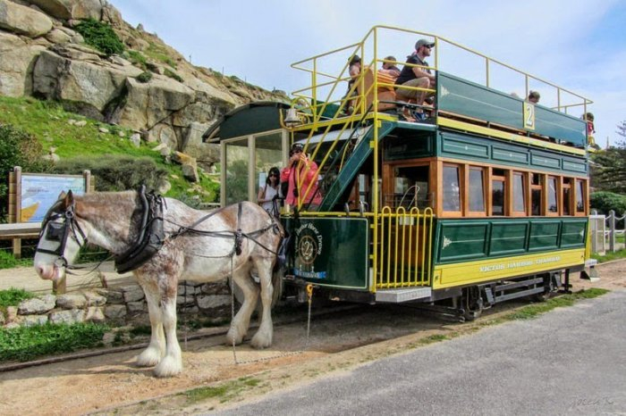 австралийский конный трамвай 1 (700x466, 321Kb)