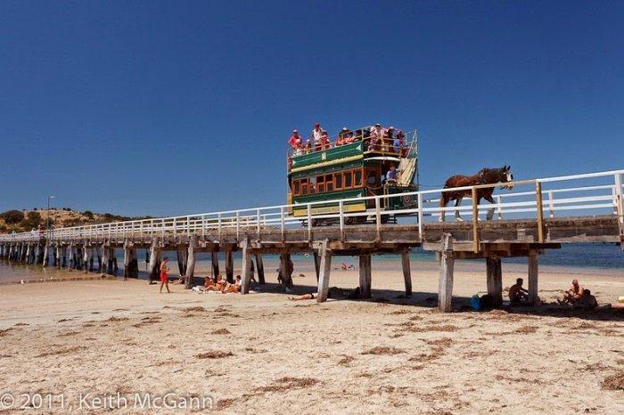 австралийский конный трамвай 4 (700x466, 252Kb)