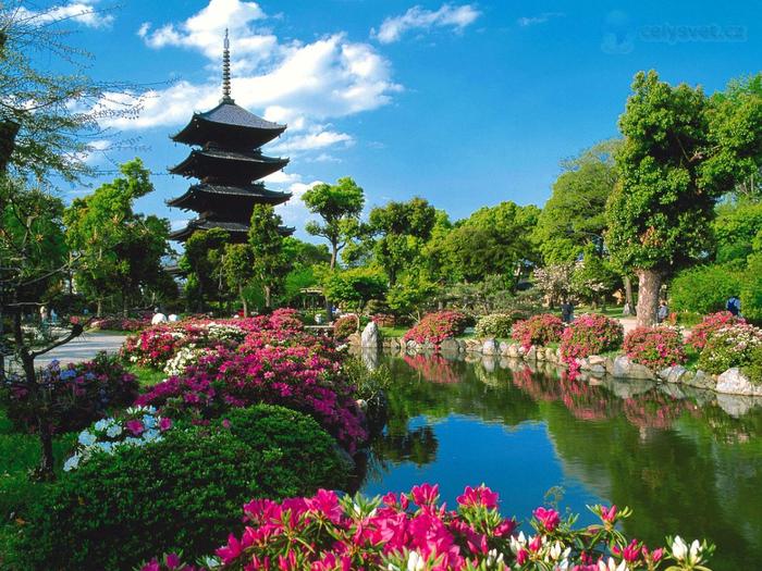 Загадки Японии и ее культуры (4) (700x525, 572Kb)