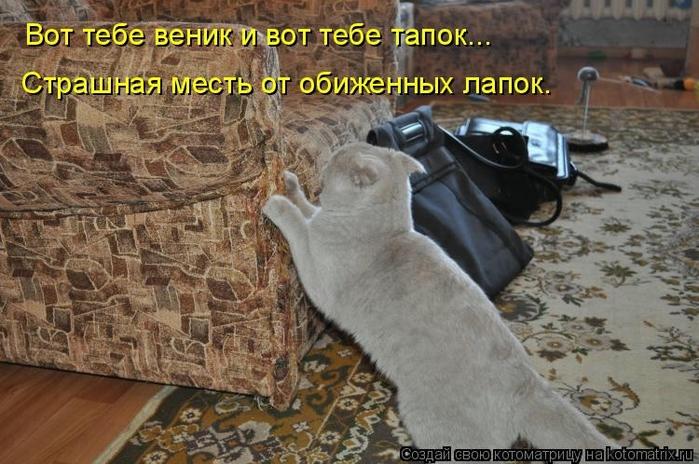 kotomatritsa_FC (700x464, 267Kb)
