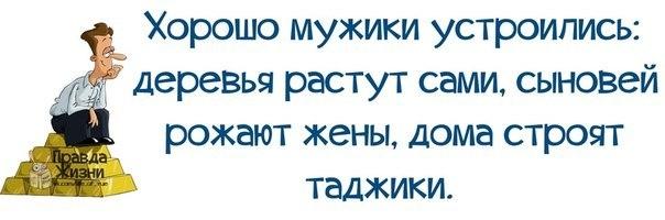 1401217438_frazochki-1 (604x200, 73Kb)
