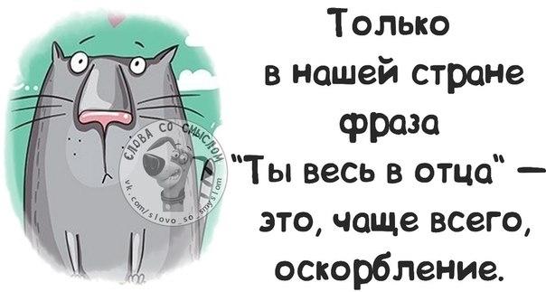 1401217605_frazochki-7 (604x323, 83Kb)