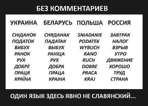 язык (492x352, 34Kb)