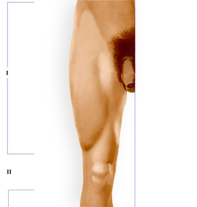внутренняя часть колена убрать жир хирургия