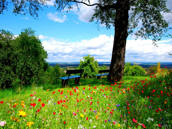 dream-spring-2012-peaceful-place_2560x1920_96622 (700x525, 689Kb)