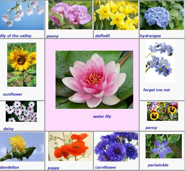 Flowers (643x594, 150Kb)