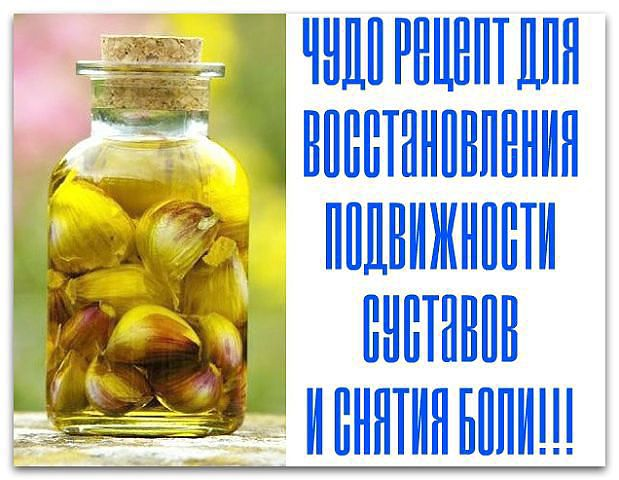 чесночное масло (619x480, 58Kb)