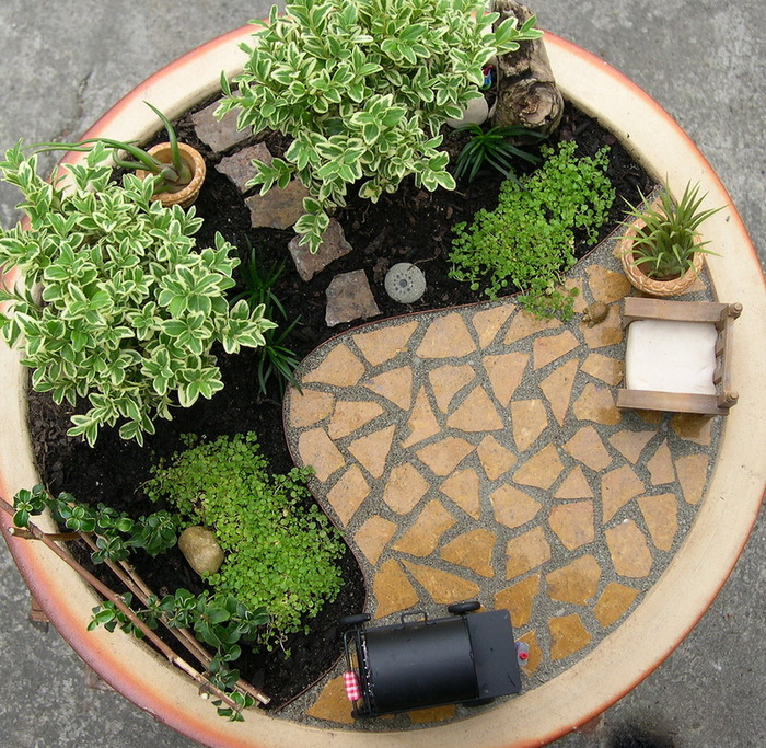 Как сделать мини-сад