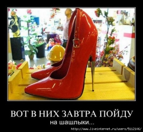 smeshnie_kartinki_132450027622 (500x463, 119Kb)