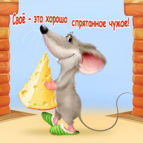 4497417_1316922913_www_nevsepic_com_ua_svoeetohoroshospryatannoechuzhoemaket (500x500, 144Kb)