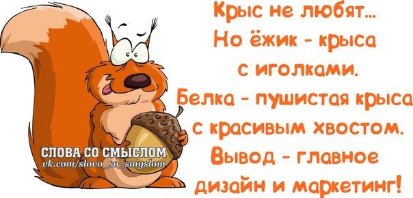 1384198106_frazochki-8 (604x290, 205Kb)