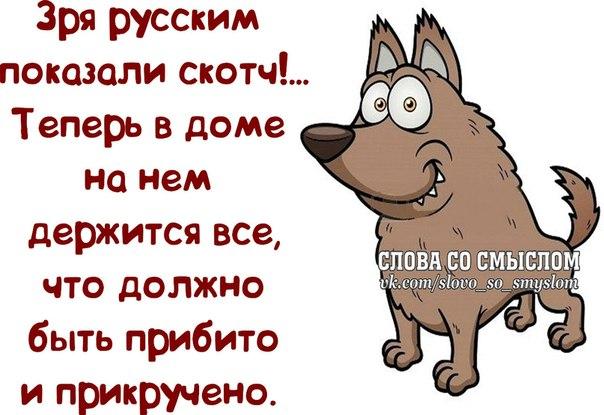 1384198172_frazochki-13 (604x415, 222Kb)