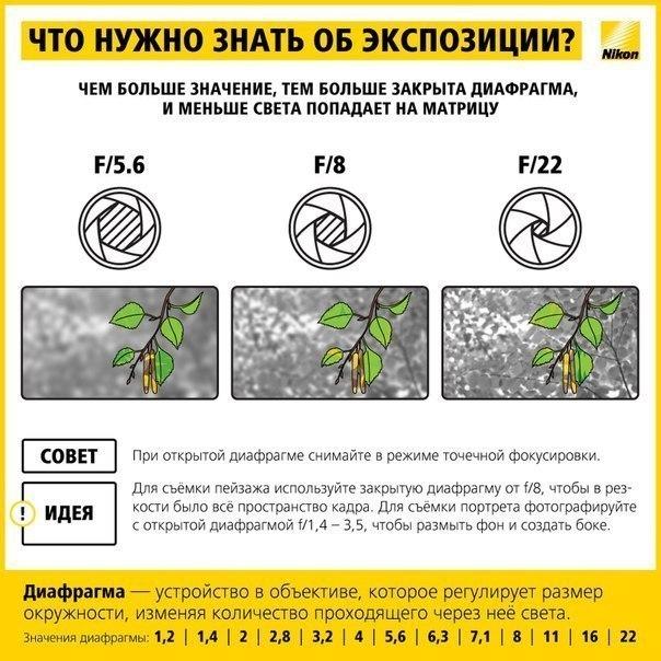 1415028500_interesnaja-pamjatka-nachinajushhim-fotografam-4 (604x604, 93Kb)