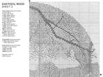 Превью JCDW241 Daffodil Wood2-2 (700x525, 281Kb)