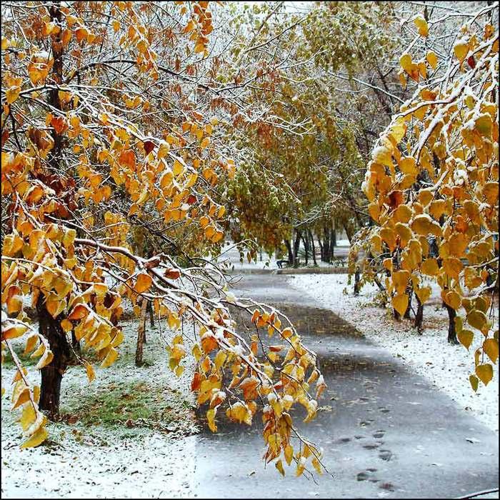 Картинки ноябрь поздняя осень с надписями