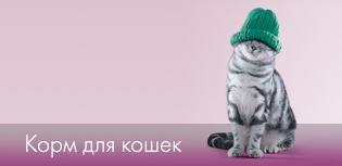 3824370_internetmagazinkormadlykoshek (400x350, 22Kb)/3180456_kot (315x153, 40Kb)