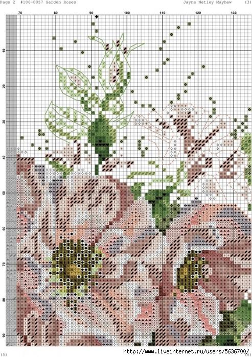 Garden_Roses.xsd-002-723x1024 (493x700, 382Kb)