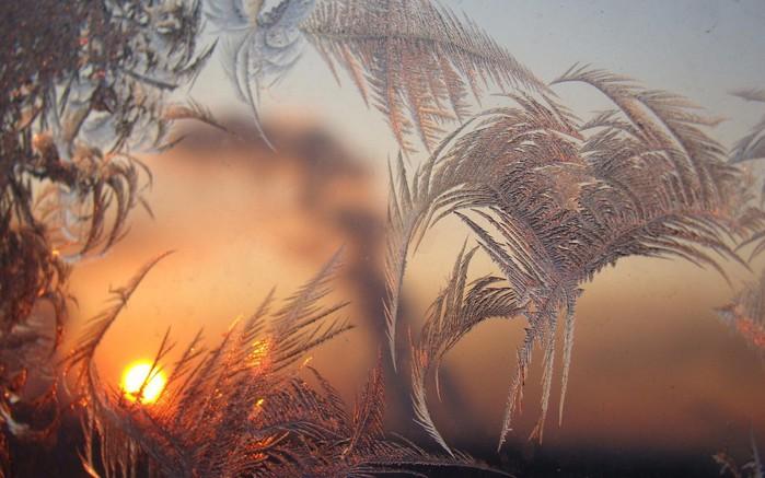 frozen-sunset-nature-600x960 (700x437, 83Kb)