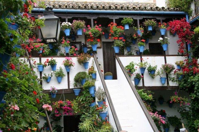 фестиваль цветов в кордове 4 (700x466, 382Kb)