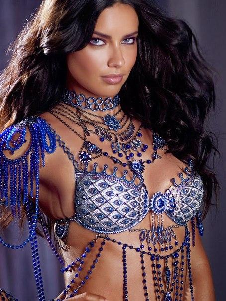 фэнтези-бра Victoria's Secret 7 (454x604, 318Kb)