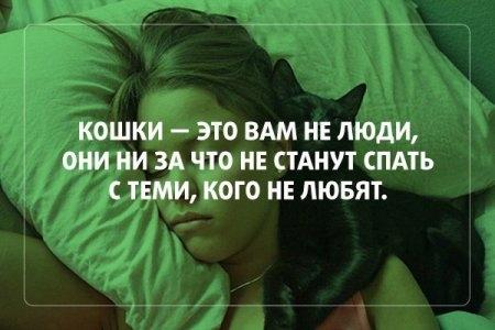 1414957651_pozitiv_02 (450x300, 80Kb)