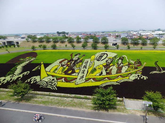 картины на рисовых полях японии 1 (700x525, 251Kb)