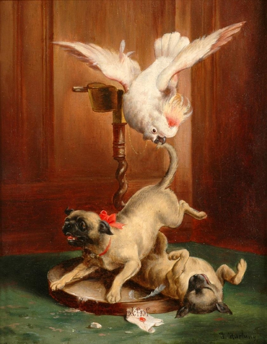 82820478_large_Johann_Hartung_Parrot_and_Pugs__Spdtes_18_Jhd1 (542x699, 379Kb)