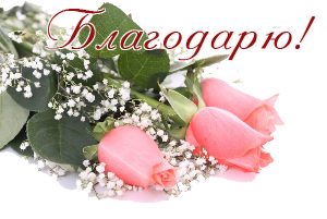 97846678_87063385_Gentile_roses__33_kopirovanie (300x201, 97Kb)