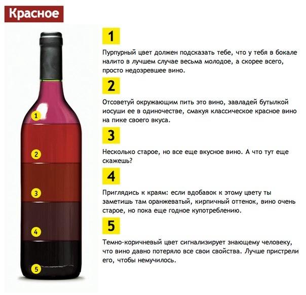 вино (604x582, 133Kb)