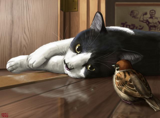 Почему кот стал писать не в лоток - ce