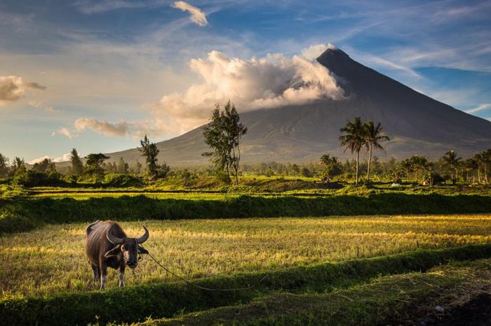 вулкан Майон фото 4 (700x466, 365Kb)