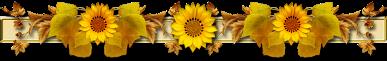 3906024_large (387x61, 46Kb)
