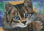Превью Большеглазый котенок (350x249, 148Kb)
