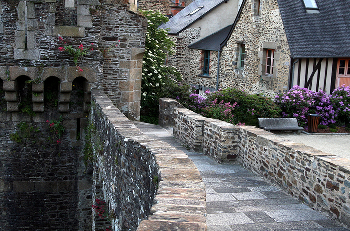 Fougeres (700x462, 762Kb)