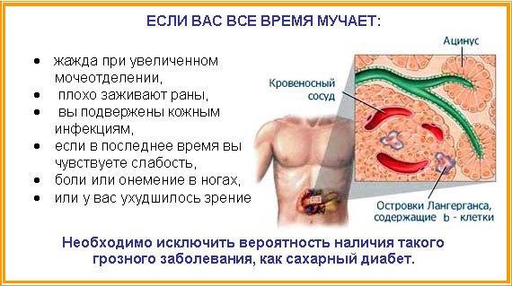 Сахарный диабет - Лечение и профилактика народными средствами. (570x319, 54Kb)