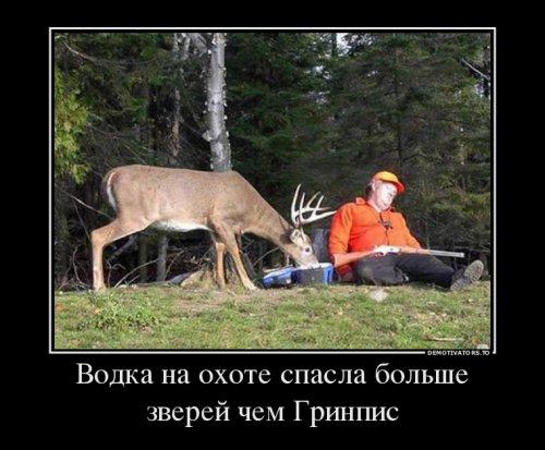 1416213650_demy-6 (500x413, 140Kb)