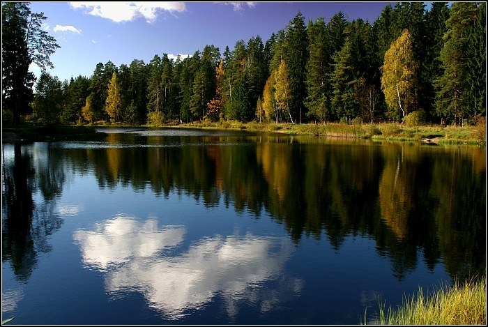 forest_Lake_16 (700x469, 103Kb)