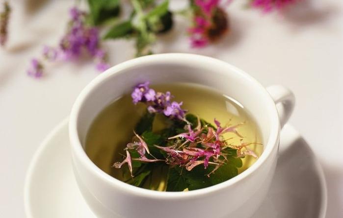 Чай из лекарственных трав (700x445, 196Kb)