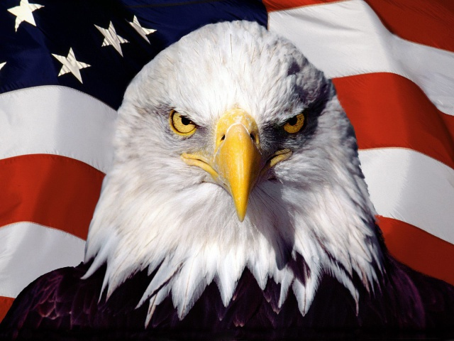 4622790_Photoshop_Eagle_and_flag_012327_29_1 (640x480, 104Kb)