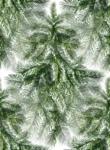 Превью ёлка-10 (110x150, 22Kb)