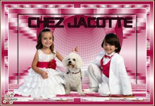 banner jacotte (316x217, 17Kb)