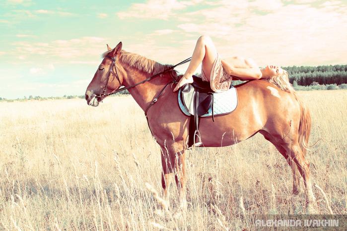 Девушки и лошади...