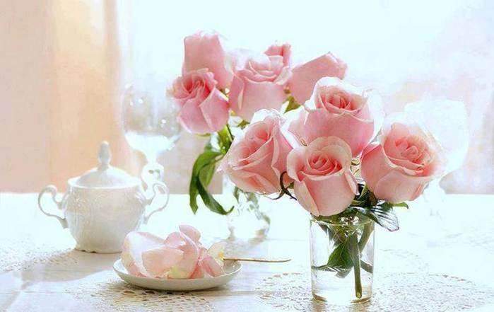 розы (700x441, 32Kb)