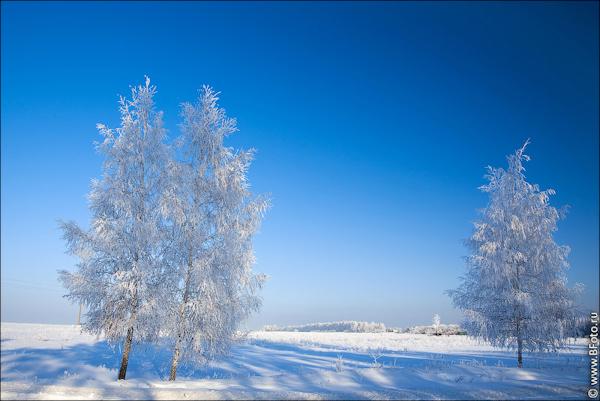 bfoto_ru_2511 (600x401, 398Kb)