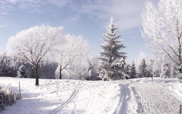 zimnii_peizazh_kartinka (600x375, 383Kb)
