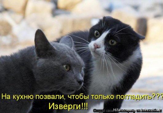4650338_83397572_Stimka_002 (530x368, 93Kb)