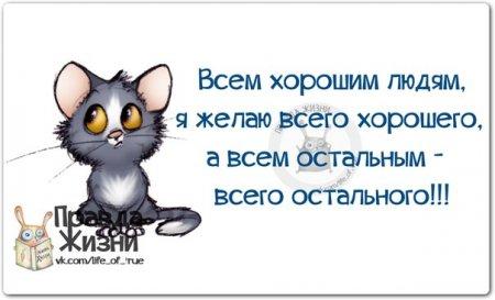 4497432_841u (450x273, 25Kb)
