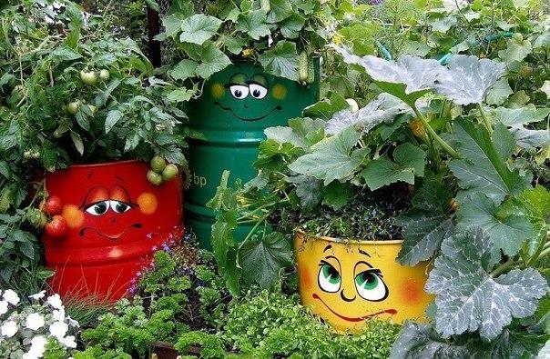 Украшаем огород своими руками картинки
